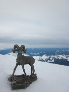Reach for the Summit, Mt Rainier, 2011